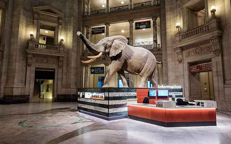 Smithsonian-image